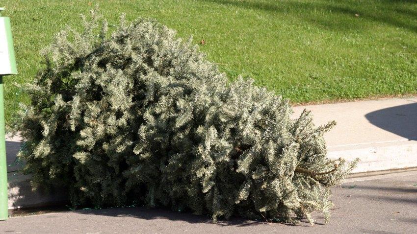 arbol-navidad-ceciclaje