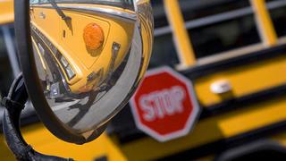 autobus escolar 441