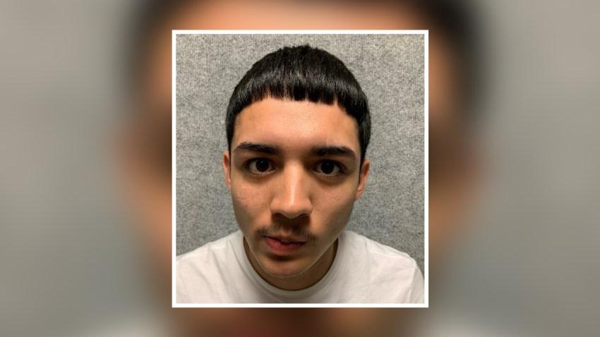 Fabian Vega arrestado