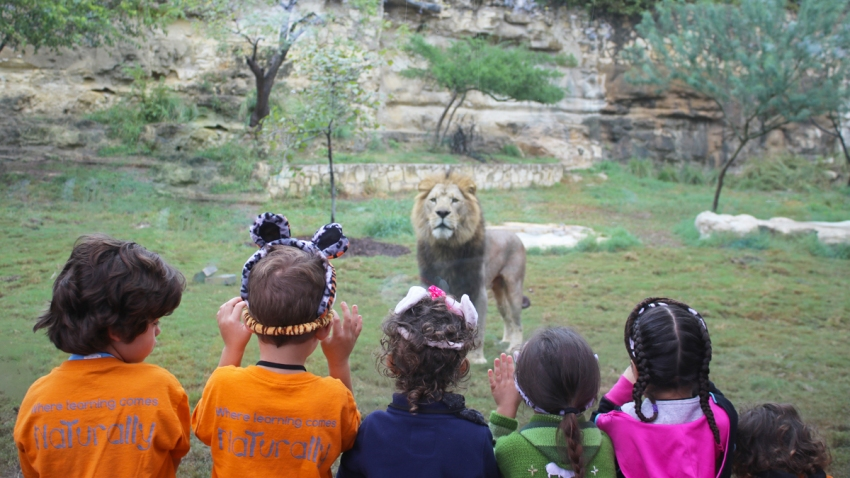 ninos-leon-zoologico-san-antonio
