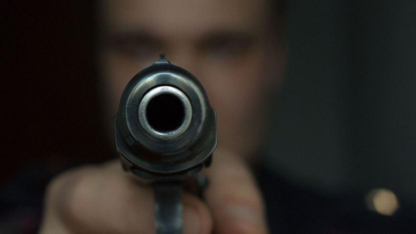pistola222.
