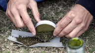 TLMD-marihuana-feria-en-uruguay