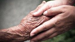 ¿Cura para el Alzheimer? Descubren estrategia innovadora