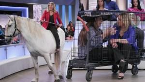 """Enjaulada y hasta montada a caballo: Ana María Polo regresa con """"Caso cerrado"""""""