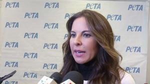 Kate del Castillo pide denunciar violencia contra animales