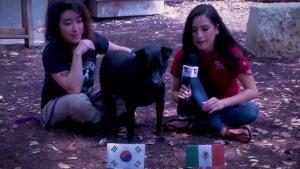 Mascota de la semana precide ganador entre México y Corea del Sur