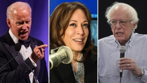 Uno por uno: quiénes son los precandidatos demócratas