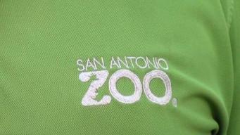 Despiden a empleado del zoológico por supuestas amenazas