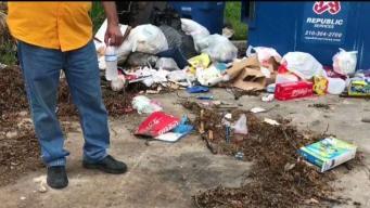 Denuncian acumulación de basura en apartamentos