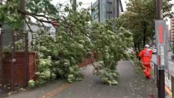 Decenas de heridos y muchos hogares sin luz en Japón por el paso de tifón