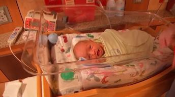 1 en 10 millones: insólito parto múltiple sorprende a padres