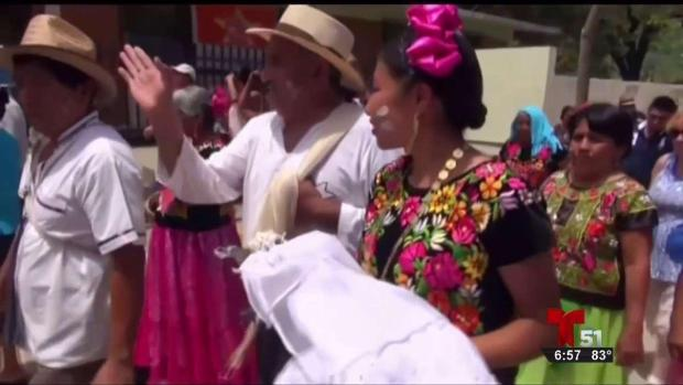 [TLMD - MIA] Alcalde en México se casa con caimán