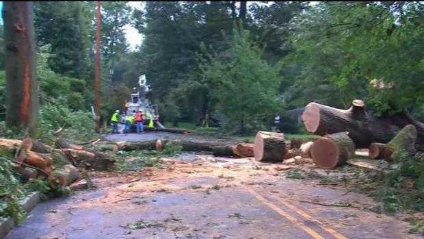 [TLMD - NY] Fuertes vientos derrumban árboles en NJ