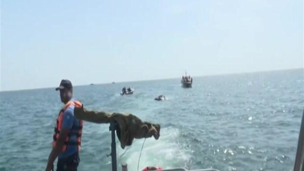 [TLMD - NATL] Rescatan a dos elefantes de morir ahogados en el mar
