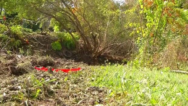 Mueren 20 tras choque en el norte del estado de NY