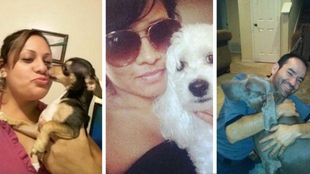 Tus fotos del Día Nacional de los Perros