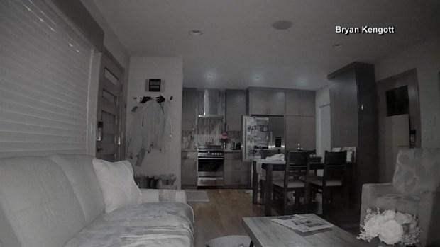 Osos se meten a una casa y revisan el refrigerador