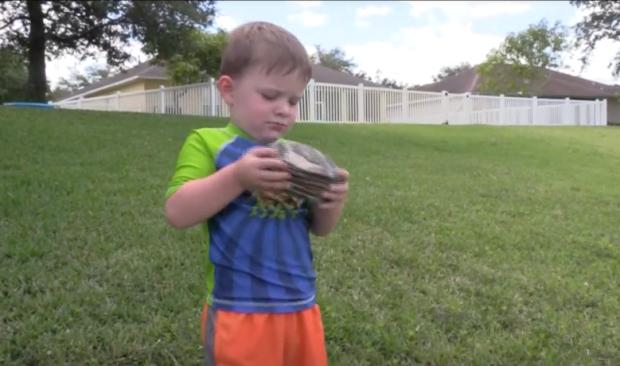Niño que lanzaba piedras descubre algo extraordinario en una laguna