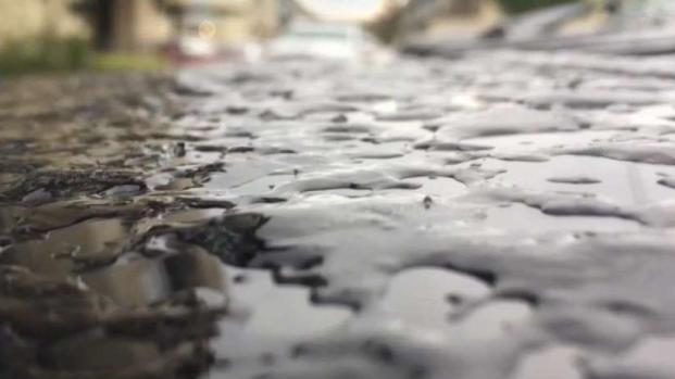 [TLMD - SA] Gran parte de la región amanece bajo hielo