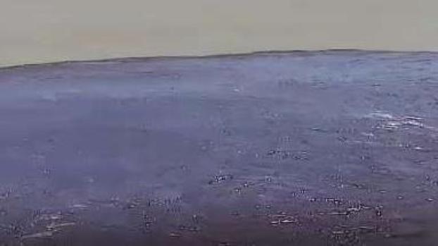 Misterio: desconocen el origen de una marea negra
