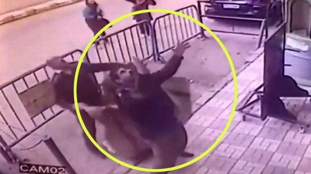 En video: atrapa en el aire a niño que cae de edificio