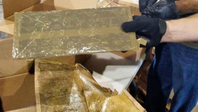Entre calabazas hallan 360 libras de cocaína