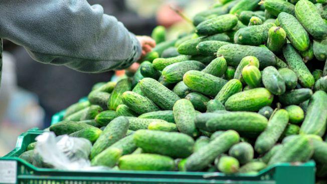 Otra muerte por salmonela ligada a pepinos