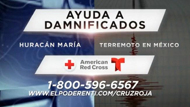 Cómo ayudar a las víctimas del terremoto y de María