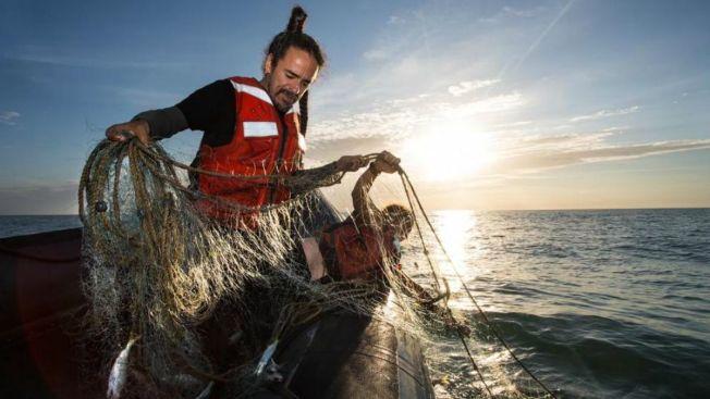 De Café Tacvba al rescate de la vaquita marina
