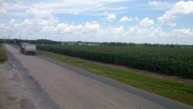 Identifican cuerpo calcinado hallado en campo de maíz