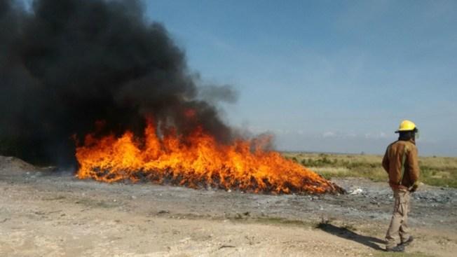 Incineran más de 1.5 de toneladas de droga en Zacatecas