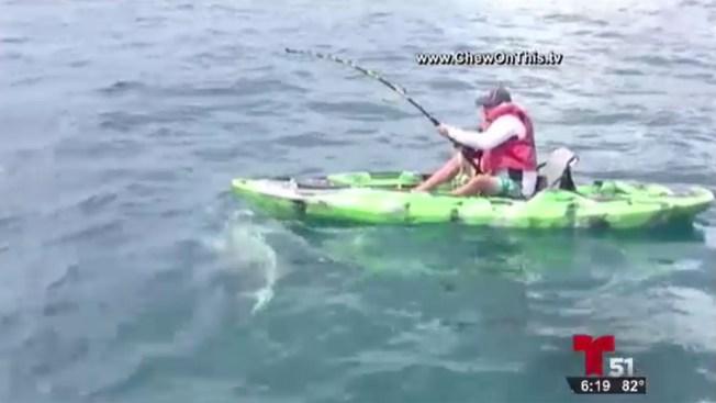 En video: encuentro cercano con tiburón