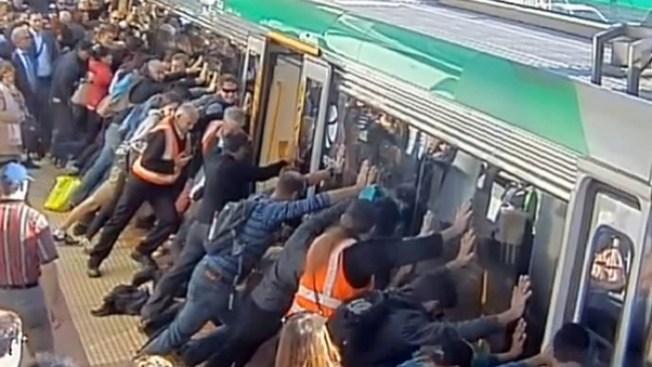 Insólito video de rescate en Australia